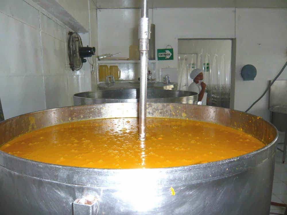 fabrication-du-nectar-de-mangue-saldac