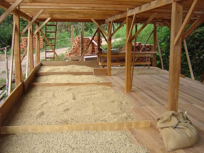 Stockage du café avant son transfert à La Merced